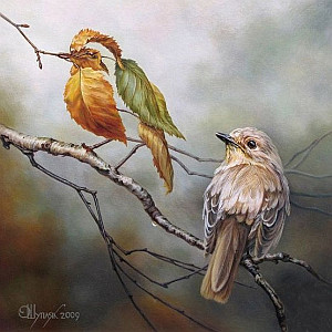Oleg Shuplyak / Дві пташки / Birds of a feather